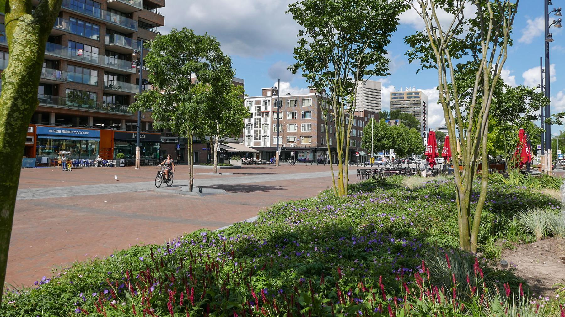 De Binnenrotte in Rotterdam is bekroond tot beste openbare ruimte. FOTO Gemeente Rotterdam